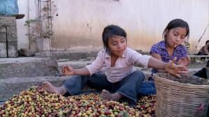 Fernsehtipp: Der faire Handel auf dem Prüfstand